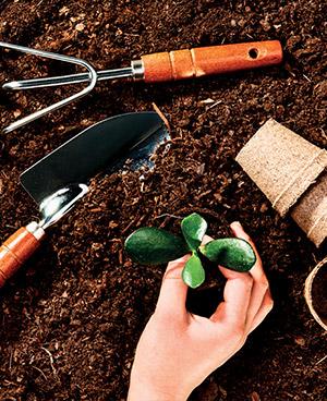 aide jardinage domicile montaigu